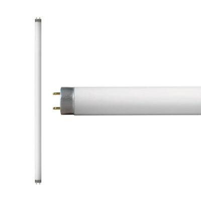 Tubo Fluorescente 54 Watts T5 4100K Philco 50853